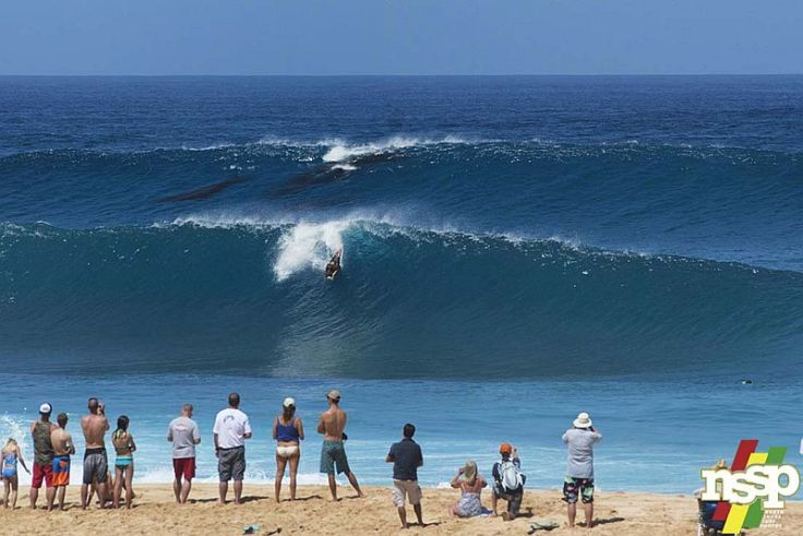 Surf with whales