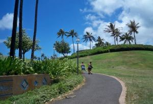The park provides trails for walking a dog or jogging.