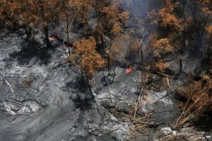 Lava on the surface burning through trees along the route.