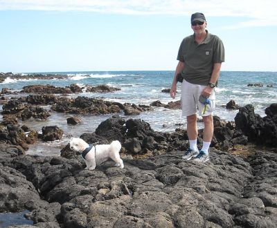 The non-beach dog consents to a short walk bu the a'a lava is too sharp for soft paws.