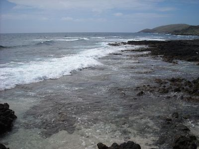 It's a rugged coastline, the last wild coast on the island of Oahu.
