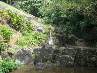 Small waterfalls and steams abound along the old road to the Pali.