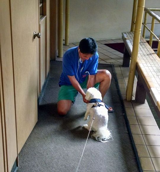 Max can track down Uncle Fish even in the the maintenance areas of the Pagoda Hotel.