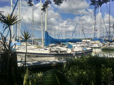La Mariana is also an actual sailing club. This is a snapshot of the harbor taken from the front door of the Tiki bar.