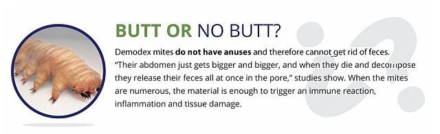 No butt