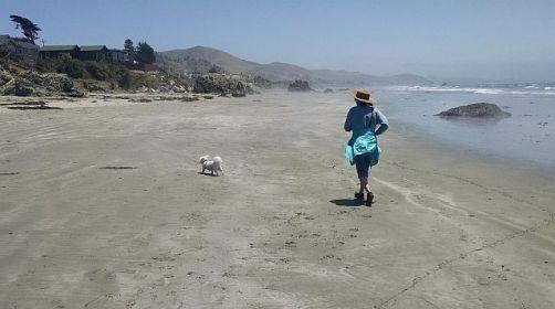 Jog on beach
