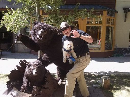 Tom w Bears