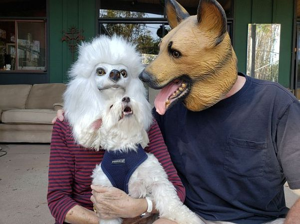 Awoo Portrait