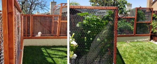 Cages before and after